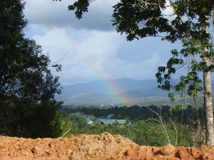 Borneo 2011 210